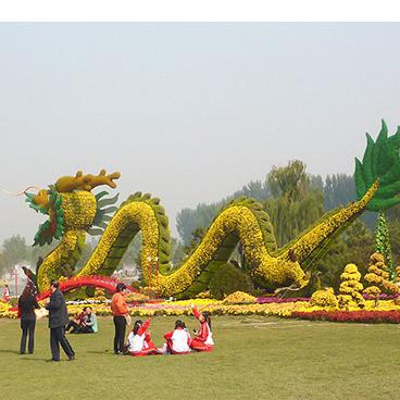 五色草 五色草造型 植物绿雕 立体花坛 绿色植物雕塑造型